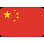 中國 (9)